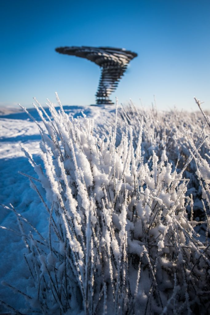 Frosty grass and singing ringing tree